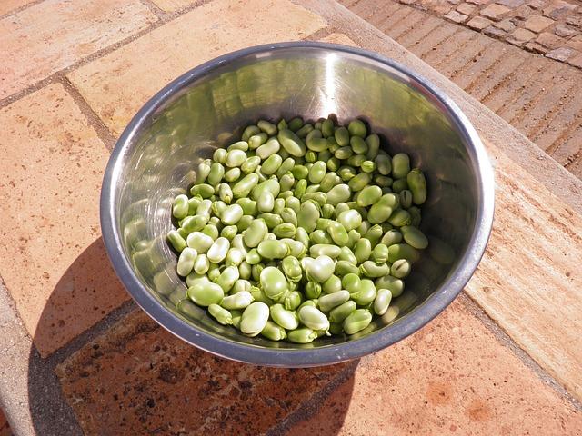 枝豆やそら豆に含まれる葉酸の量