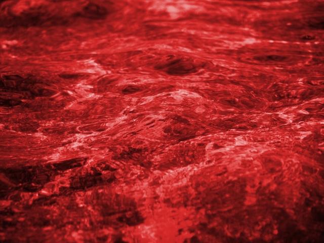 葉酸の血中濃度はどのくらい?葉酸はアミノ酸の血中濃度を低くする?