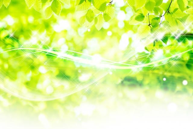 葉酸サプリを選ぶなら天然・無添加・オーガニックが良いのか?