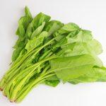 熱に弱い葉酸をほうれん草から摂る方法